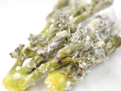タラの芽の天ぷら つくる楽しみ 天ぷら レシピ タラ