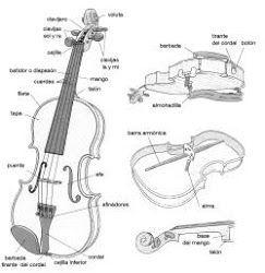 Partes Del Violin Violines Violin Dibujos Notas De Violin