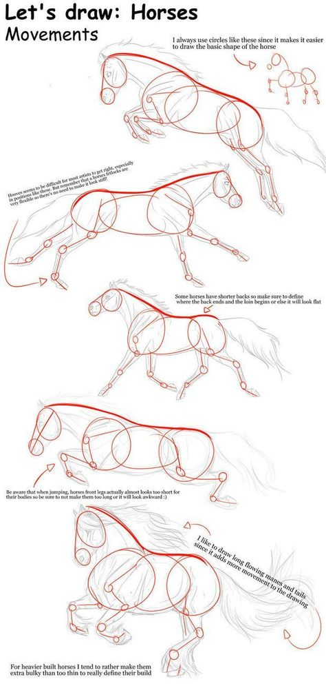 THIS IS SO HELPFUL! i could never draw horses before. Horse movements - Tutorial... - https://repingram.com/this-is-so-helpful-i-could-never-draw-horses-before-horse-movements-tutorial/ - #Draw #Helpful #Horse #Horses #movements #Tutorial