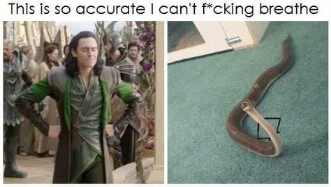 30+ Epic Avengers Memes To Get You Stoked For Infinity War