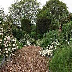 Cothay Manor Near Wellington Somerset A Pair Of Yew Topiary Cylinders Add Strong Design To These Green And White Planted Beds A Topiary Instagram Botanica