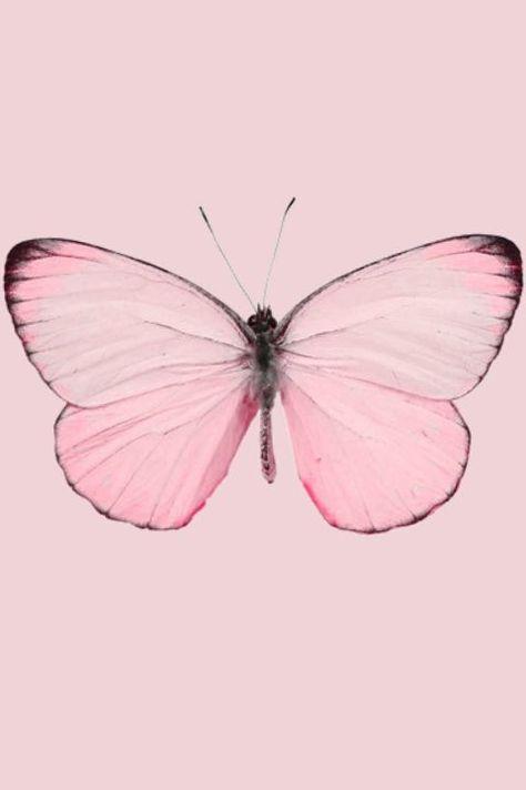 Eu nem te contei uma novidade quente, eu nem te co... - #contei #Eu #nem #novidade #pink #quente #te #uma