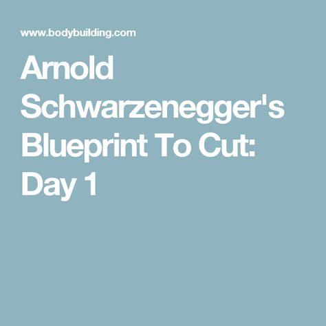 Arnold Schwarzeneggeru0027s Blueprint To Cut | Arnold Schwarzenegger,  Bodybuilder And Workout.