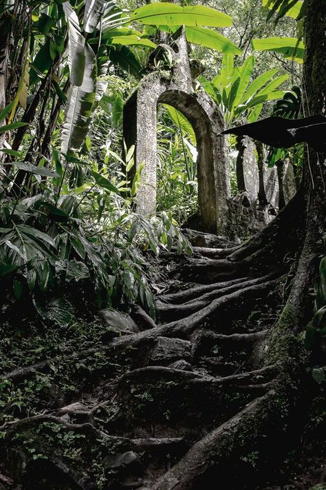 The Mysterious Castle of Sir Edward James and the Xilitla Garden - Landscape Architects Network Mysterious Places, Environment Concept Art, Abandoned Places, Haunted Places, Adventure Awaits, Garden Landscaping, Modern Landscaping, Paths, Places To Go