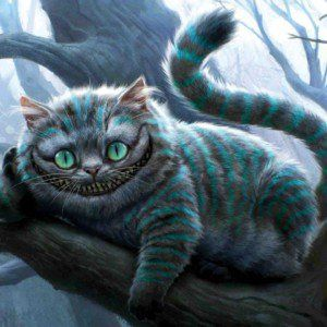 Cat Wallpapers Cheshire Cat Wallpaper Cute Cat Wallpaper Cat