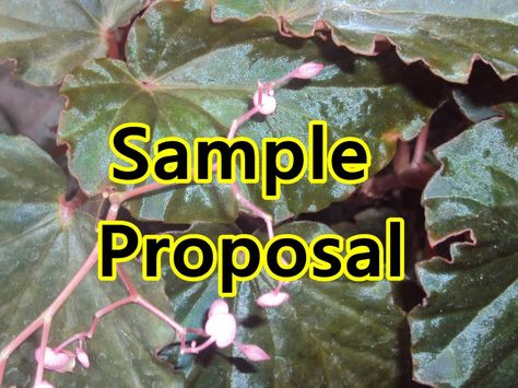 sample proposal Sample Proposal Pinterest Proposals, Power - plant pathologist sample resume