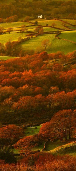 Lyth Valley, Lake District, Cumbria, England