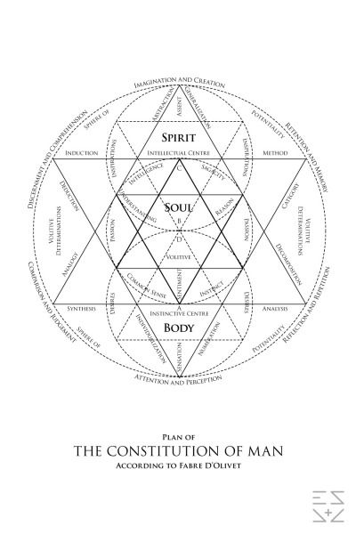 Plan of The Constitution of Man According to Fabre D'Olivet Sacred Geometry Meanings, Sacred Geometry Patterns, Sacred Geometry Tattoo, Tattoos Mandala, Tribal Tattoos, Spiritual Symbols, Occult Art, Spirit Science, Flower Of Life