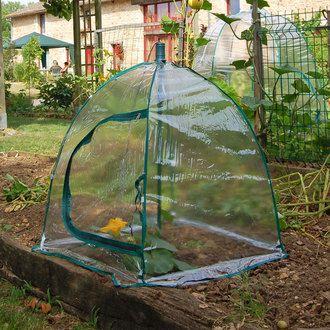Serre De Jardin Parapluie Carree Souple 65x65cm Hauteur 75cm Potager Jany France Disponible Chez Delamaison Serre Jardin Jardins Mini Serre De Jardin