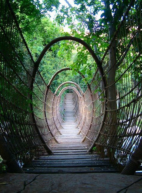 """Spider Bridge in Sun City North-West of South Africa.  ....Many tourists say it's like """"walking through an amazing portal to another world"""""""