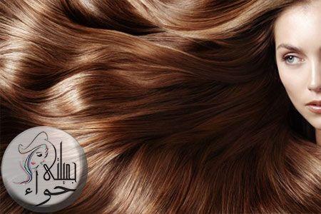 أفضل 5 وصفات طبيعية للعناية بالشعر Natural Hair Care Hair Care Long Hair Styles