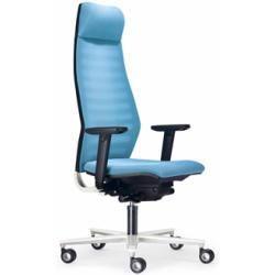 Ergonomic Office Chairs Orthopedic Office Chairs Ergonomische Burostuhle Orthopadische Burostuhle Executi Burostuhl Ergonomisch Schreibtischsessel Sessel