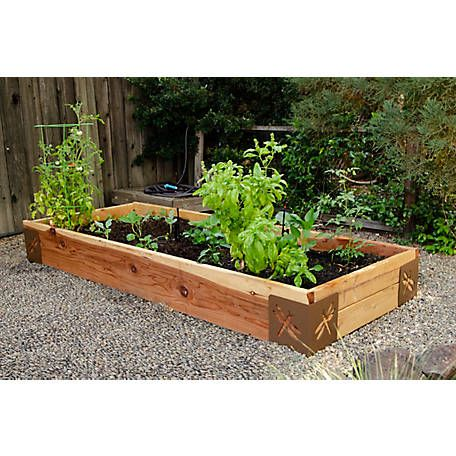 Bond Instabrace 4 Pack Blank 11029bl At Tractor Supply Co In 2020 With Images Outdoor Living Patio Garden Beds Outdoor Decor