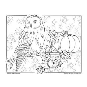 Halloween Owl Coloring Page Owl Coloring Pages Thanksgiving Coloring Pages Halloween Owl