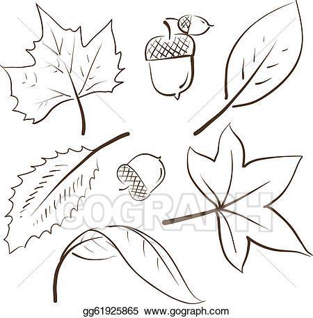 Autumn Leaves Sketch Leaves Sketch Leaves Doodle Autumn Leaves Art