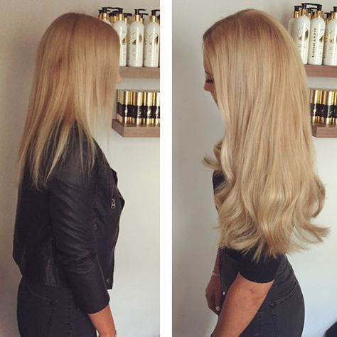 La france a poil blonde