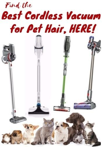 Best Cordless Vacuum For Pet Hair Guide By Pro That Knows With Images Best Cordless Vacuum Pet Hair Vacuum Cleaner Cordless Vacuum