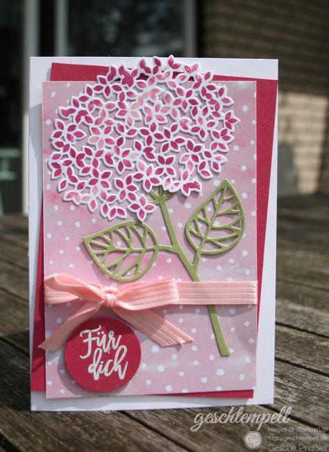 Eine Hortensie in Rosenrot und Kirschblüte | geschtempelt