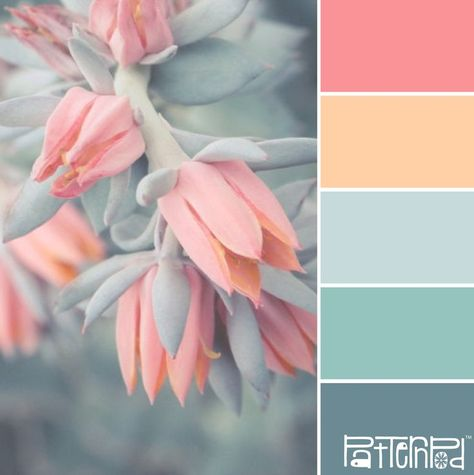 Colour color scheme palette with peaches and greens