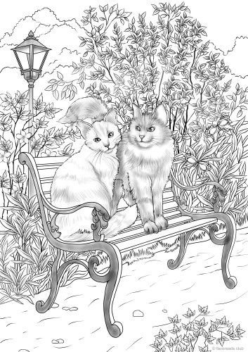 romantic cats animal coloring pages