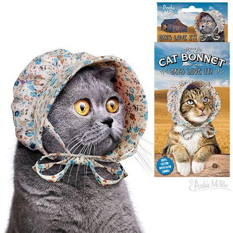 Cat Bonnet Little Kittens Little Kitty Kitty