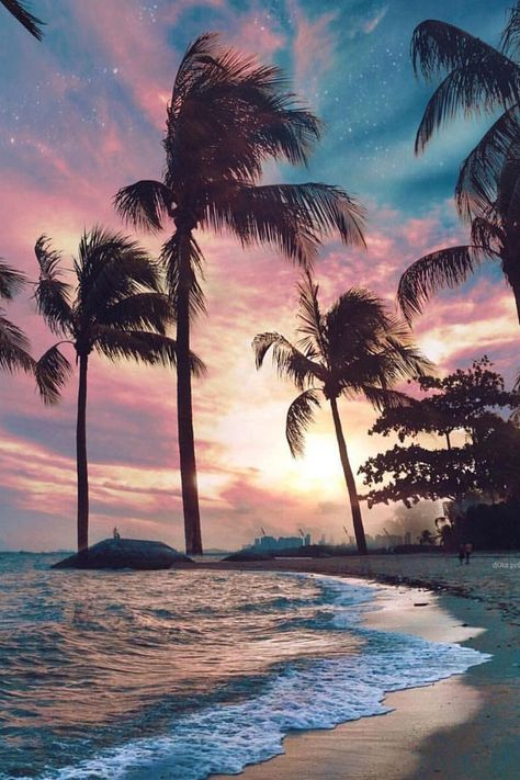 East Coast Park Beach #miami #florida #miamibeach #sobe #southbeach #brickell #florida