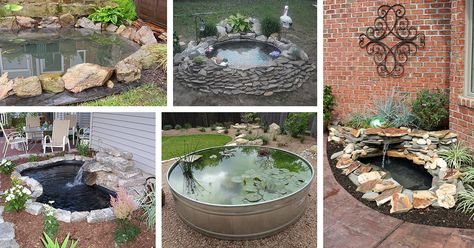 18 Best DIY Backyard Pond Ideas and Designs for 2019