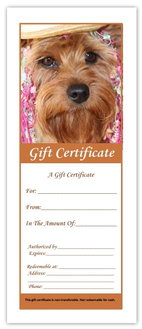 Printable pdf Pet Grooming Gift Certificates \ Display Poster - download gift certificate template