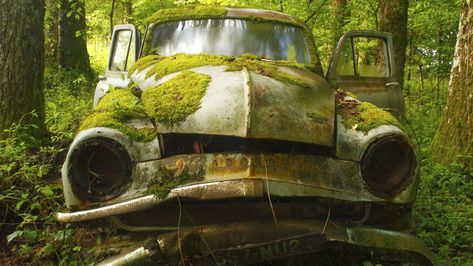 Mossy Green and forgotten. Oh if this car could talk. The stories it could tell.