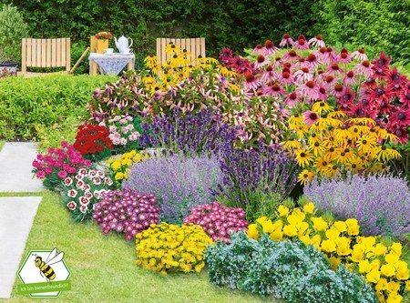 Mein Schoner Garten Staudenbeet Blooms For Months 29 Pflanzen In 2020 Staudenbeet Gartenpflanzen Winterhart Pflanzen