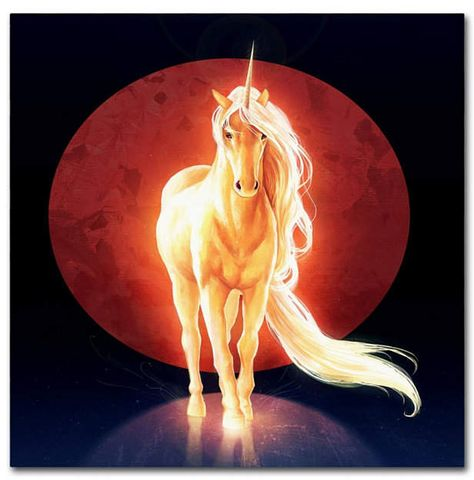 Trademark Global JoJoesArt 'Last Unicorn' Canvas Art - 24  x 24  x 2