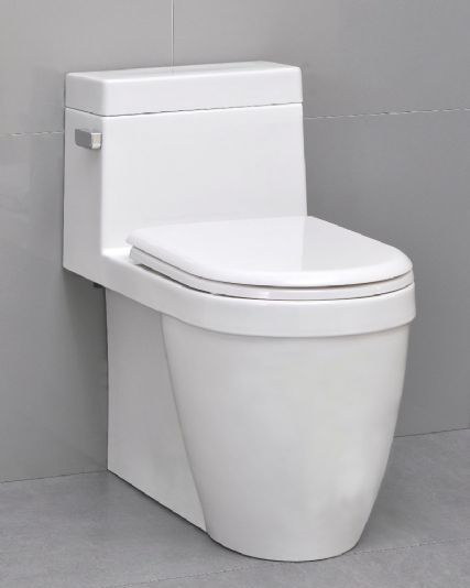 Excellent Icera Muse One Piece Elongated Comfort Height Toilet With Evergreenethics Interior Chair Design Evergreenethicsorg