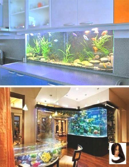 Aquariums Custom Design Fish Interior Tanks Tropical Unique Unusual 35 Unusual Aquariums And Custom Trop Aquarium Design Tropical Fish Tanks Fish Tank