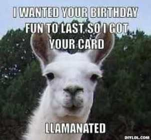 50 Funny Happy Birthday Memes Images Quotes Funny Happy Birthday Meme Happy Birthday Quotes Funny Birthday Wishes Funny