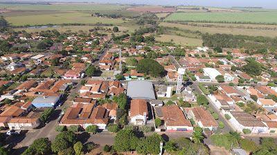 Rubiácea São Paulo fonte: i.pinimg.com
