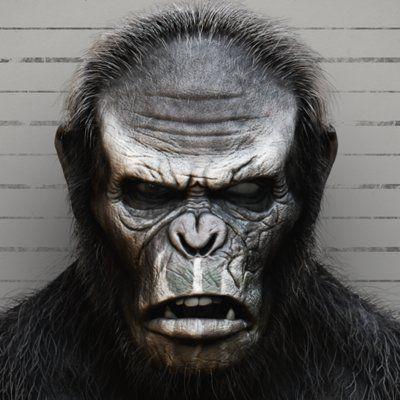 Koba Planet Of The Apes Fan Art Primatas Macacos Mamiferos