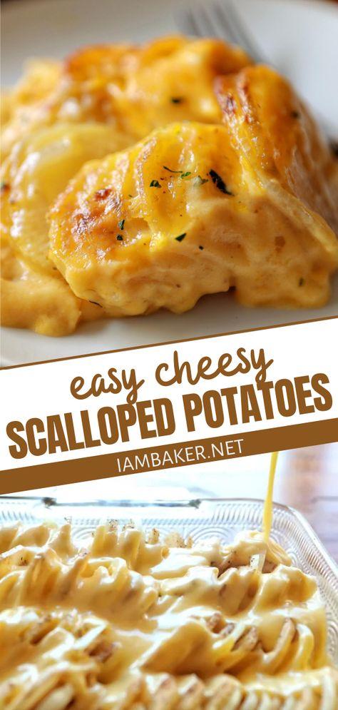 Cheesy Scalloped Potatoes Recipe, Scallop Potatoes, Chessy Potatoes, Easy Cheesy Scalloped Potatoes, Russet Potatoes, Baked Potatoes, Pumpkin Recipes, Fall Recipes, Thanksgiving
