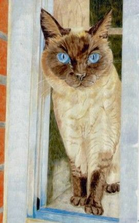 Pin By Michele Mckenzie Bobbitt On 1 Art Cats3 Cat Art Color Pencil Art Animal Art
