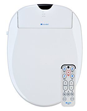 10 Best Bidet Toilet Seat Reviews By Consumer Report For 2020 Bidet Toilet Seat Heated Toilet Seat Bidet