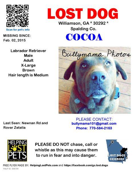 Lost Dog - Labrador Retriever - Williamson, GA, United States