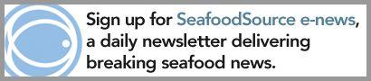 Decision looms for Gulf Coast shrimp processors - SeafoodSource.com