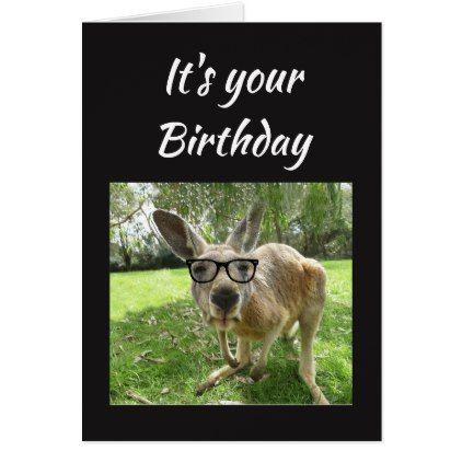 Birthday Fun Kangaroo Australia Animal Art Card Zazzle Com Australia Animals Australian Animals Cool Pets