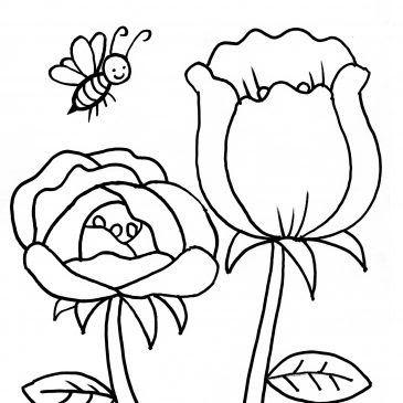 Gambar Mewarnai Hewan Kupu Kupu Gambar Mewarnai Hewan Kupu Kupu Temukan Gambar Gambar Kupu Kupu Kami Memberikan Kumpulan Gamb Cara Menggambar Gambar Lebah