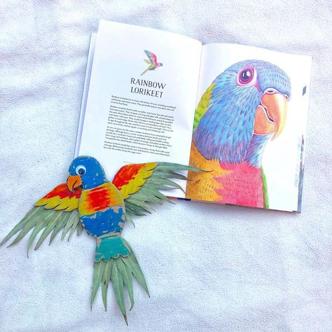 """Bea - Creative Ideas on Instagram: """"🌈Rainbow Lorikeet🌈 . We borrowed this beautiful book Australian Birds by Matt Chun at the library earlier this week and learned a bit more…"""""""