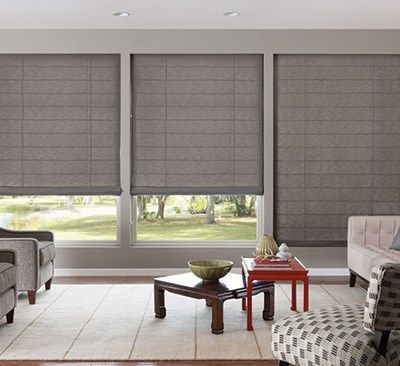 15 Delicious Roller Blinds Green Ideas Living Room Blinds