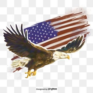 Hand Painted Elements Of American Flag National Flag National Bird Hand Painted Png Transparent Clipart Image And Psd File For Free Download Eagle Cartoon Flag Painting National Flag