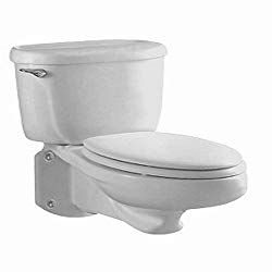 Best Wall Hung Toilet Reviews With Amazing Features Flushing Toilet Review Wall Mounted Toilet Wall Hung Toilet Commercial Toilet