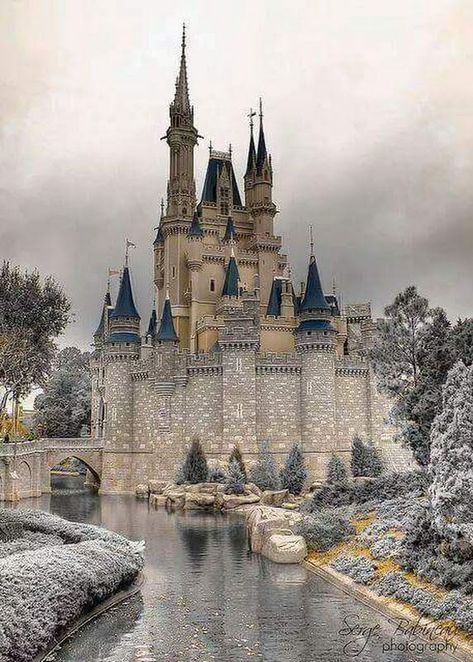 Disney Castle, Orlando FL (had been labeled as Drachenburg Castle in Königswinter, Germany.)