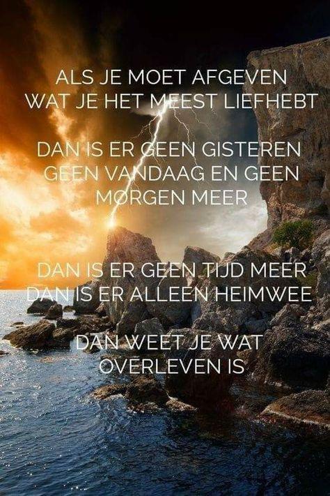 Pin von Iris Gütting auf holländische Sprüche   Sprüche