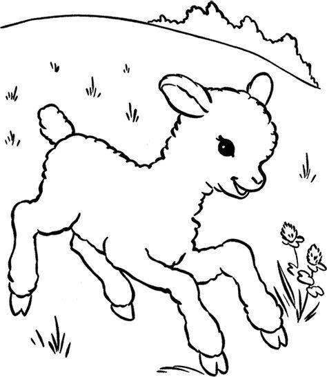 Koyun Keçi Boyama Sayfası Hayvanlar Ve Yavrulari Pinturas Arte